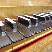 Clavichords & Harpsichords